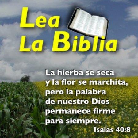 La Biblia Frases