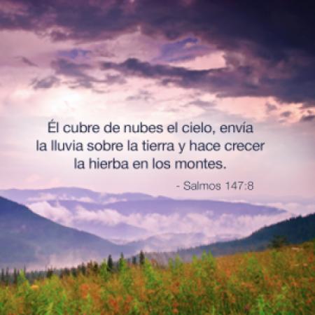 Salmos Cristianos Bonitos