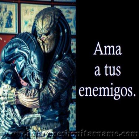 Alien Y Depredador Son Amigos