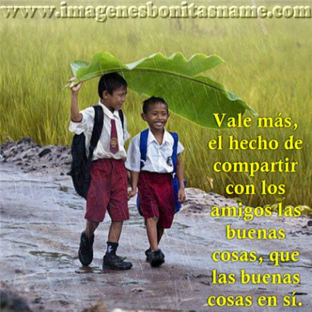 Amigos Caminando Bajo La Lluvia