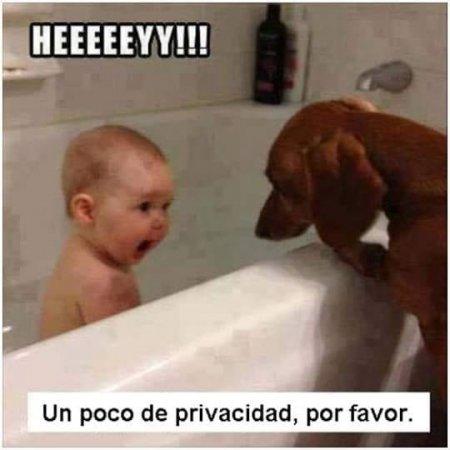 Bebe Pide Privacidad