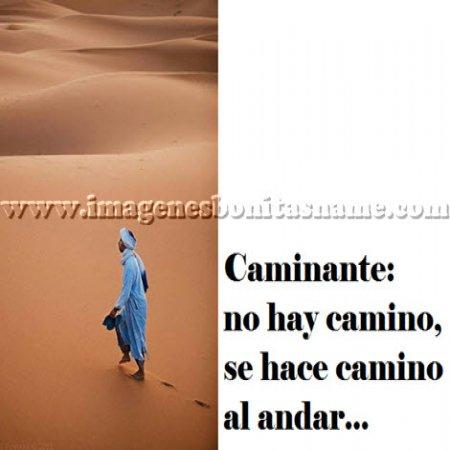 Beduino Paseando Por El Desierto