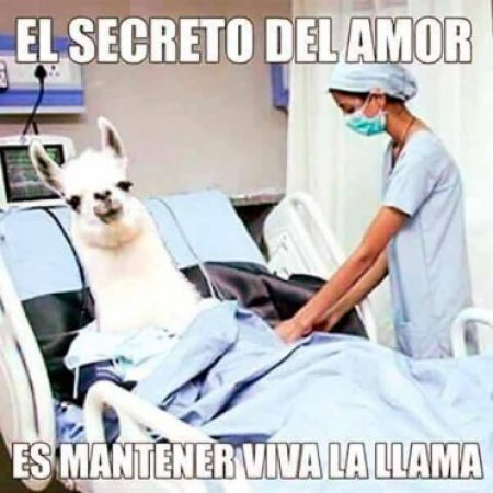 El Secreto Del Amor Meme