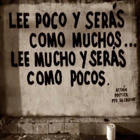Frases De Accion Poetica Lee Mucho