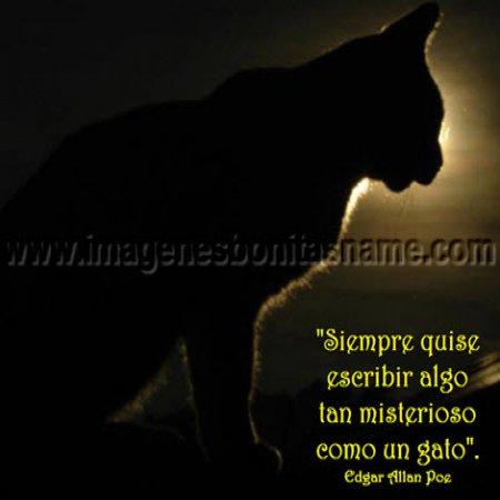 Frases De Allan Poe