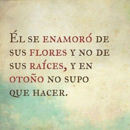 Frases Para Facebook El Se Enamoro