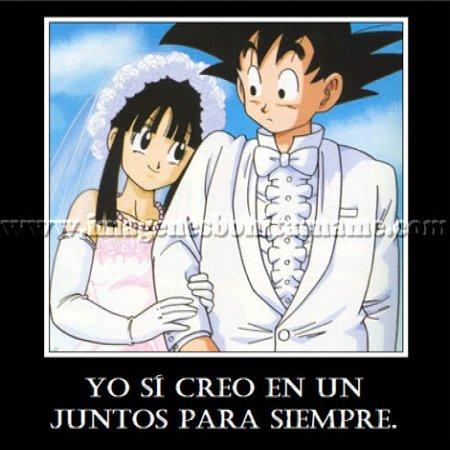 Goku Con Su Esposa