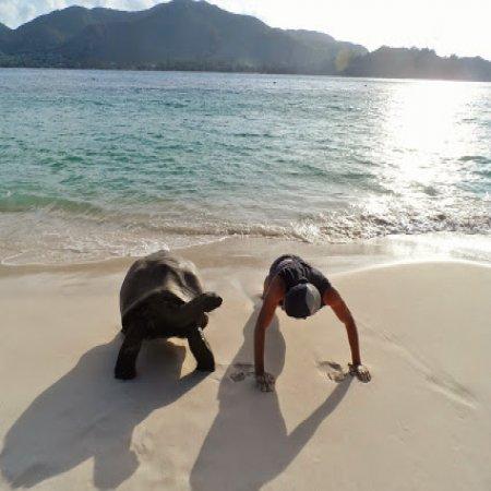 Haciendo Ejercicio En La Playa