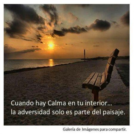 Imagenes Bonitas Con Frases Positivas