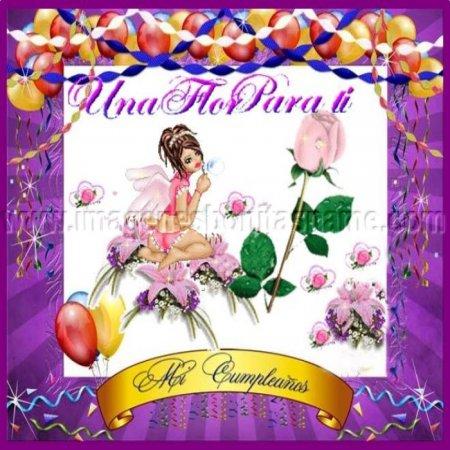 Imagenes Bonitas Una Flor Para Ti