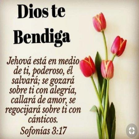Imagenes Con Frase Dios Te Bendiga