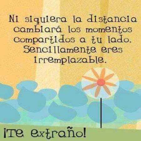 Imagenes Con Frases Te Extrano