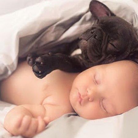 Imagenes De Bebes Con Cachorro