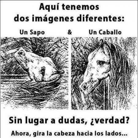 Imagenes Diferentes Reto Visual