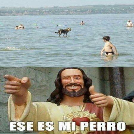 Jesus Ese Es Mi Perro