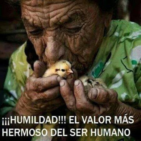 La Humildad El Valor Mas Hermoso Imagenes Bonitas