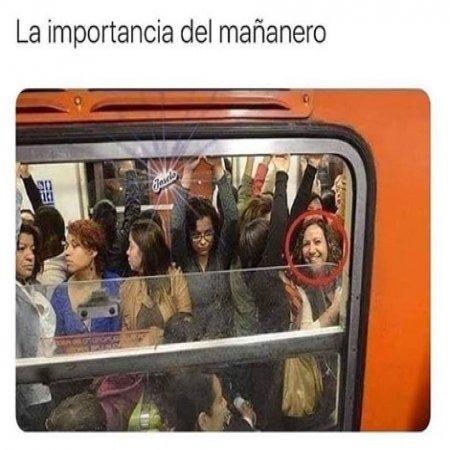 La Importancia Del Mananero