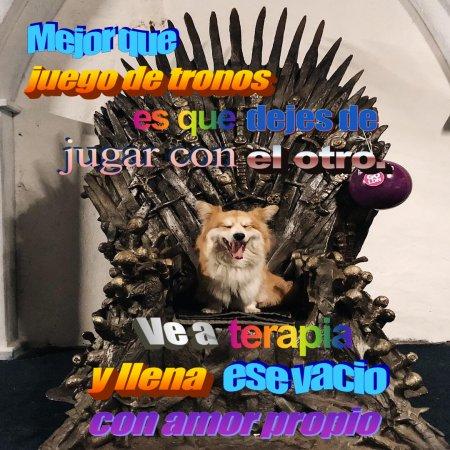 Mejor Que Juego De Tronos Perritos Con Frases Inspiradoras