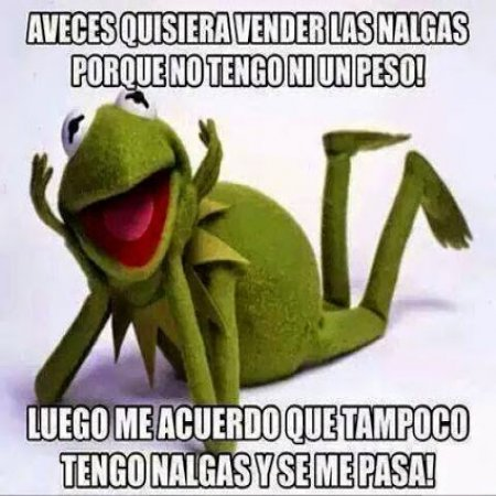 Memes De La Rana Nene A Veces