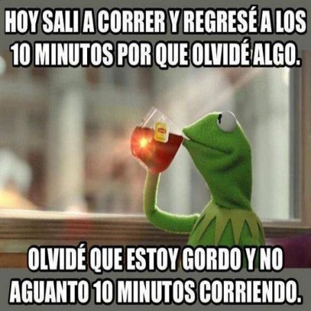 Memes De La Rana Rene