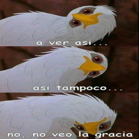 No Veo La Gracia Para Whataspp