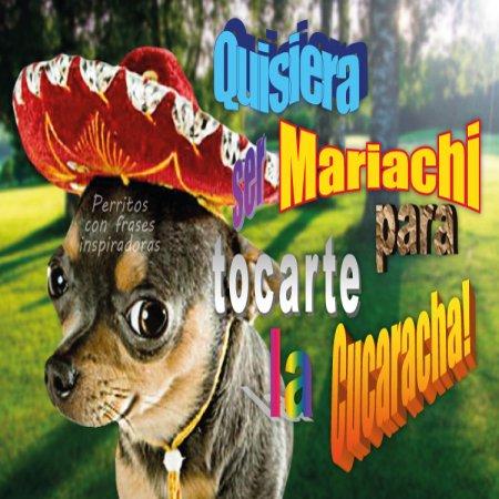 Quisiera Ser Mariachi