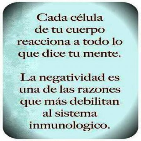 Ser Feliz Negatividad Sistema Inmunologico