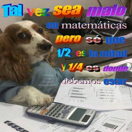 Tal Vez Sea Malo En Matematicas