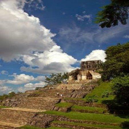 Templo De Palenque Mexico