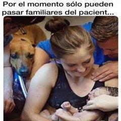 Nacimiento de bebe junto a su perrito