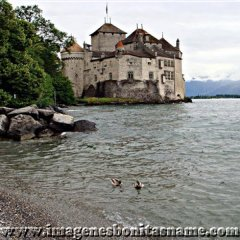 Castillo De Chillon Lago De Ginebra Suiza