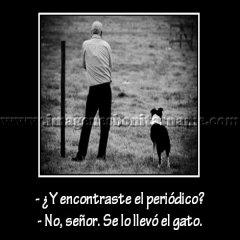 Amo Y Perro