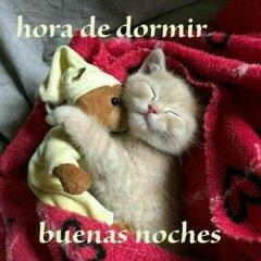 Bonitas Imagenes Hora De Dormir
