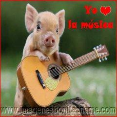 Cerdito Tocando La Guitarra