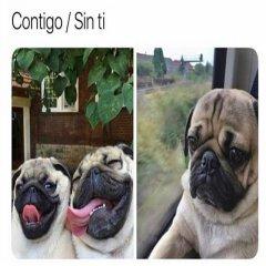 Fotos Contigo Sin Ti