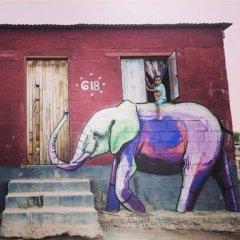 Ilustracion En La Calle Elefante