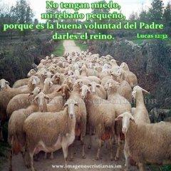 Imagenes Cristianas Manada Peque Plusmn A