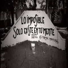 Lo Imposible Frases De Accion Poetica
