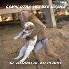 Lucho Perro Se Olvido