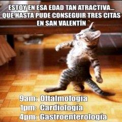Meme Divertido San Valentin