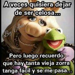 Memes De La Rana Rena A Veces Quisiera