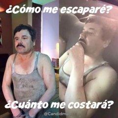 Memes Del Chapo Recaptura
