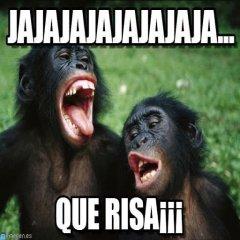 Meme Monos Que Risa