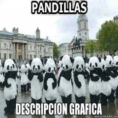 Pandillas Descripcion Grafica