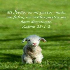 Salmo23 1 2