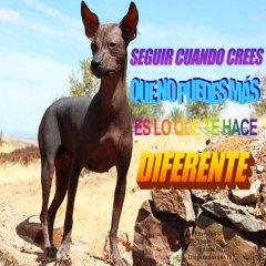 Imagenes Reflexivas Del Pecado