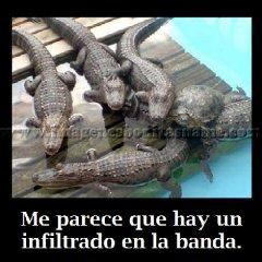 Imagenes Bonitas Con Frases