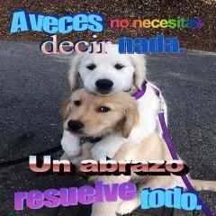 Yo Todas Las Mananas