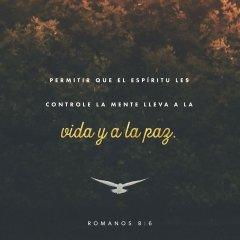 Vida Y Paz
